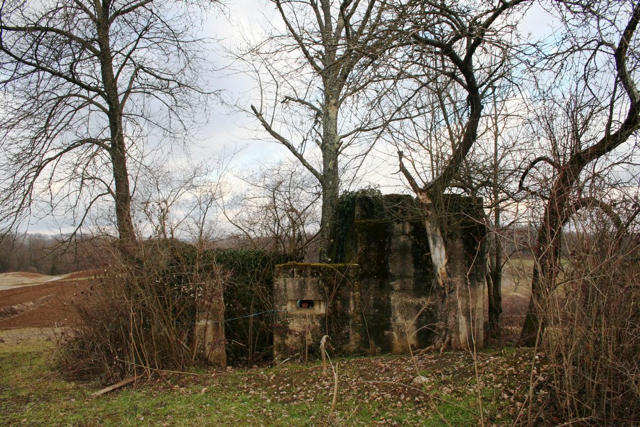 Ostanki italijanskega bunkerja pri Rosalnicah, postavljeni so bili na vzpetinah sredi polj. Avtor fotografije: Sonja Bezenšek. Črnomaljski župnik Lojze Jože Žabkar je v svojem dnevniku 3. avgusta 1943 zapisal: »Metliški prošt Alfonz Klemenčič danes goduje, zato sem se ob enajstih odpeljal k njemu. Metlika – sami bunkerji, žice, jarki. Italijani še zmeraj napenjajo žico (Rosalnice – Slamna vas). Čemu, ko se imperij podira? Mnogi lepi spomini me vežejo na Metliko – tu sem bil pred šestimi leti kaplan in sem se odlično počutil. A danes je vse drugače.« Žabkar, Izpovedi (pesmi in dnevnik), 89.