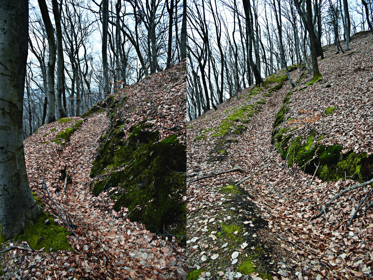 The terrain surrounding Rogaška Slatina and even in the town itself still clearly shows the remains of defensive fortifications. The photographs show the remains of a firing trench on Janina, a hill in the centre of Rogaška Slatina. Photo Daniel Siter