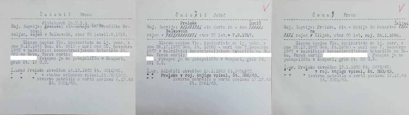 Zapiski o pokojnih Francu Čadoniču, Jožetu Čadoniču in Francu Čemasu v kartoteki, ki jo hrani Nadškofijski arhiv v Ljubljani.